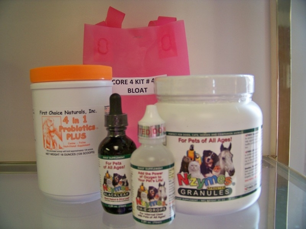 Kit #40 - CORE 4 - (4 in 1 ORANGE) Aids in Bloat Prevention & Lower Yeast & Giardia Levels
